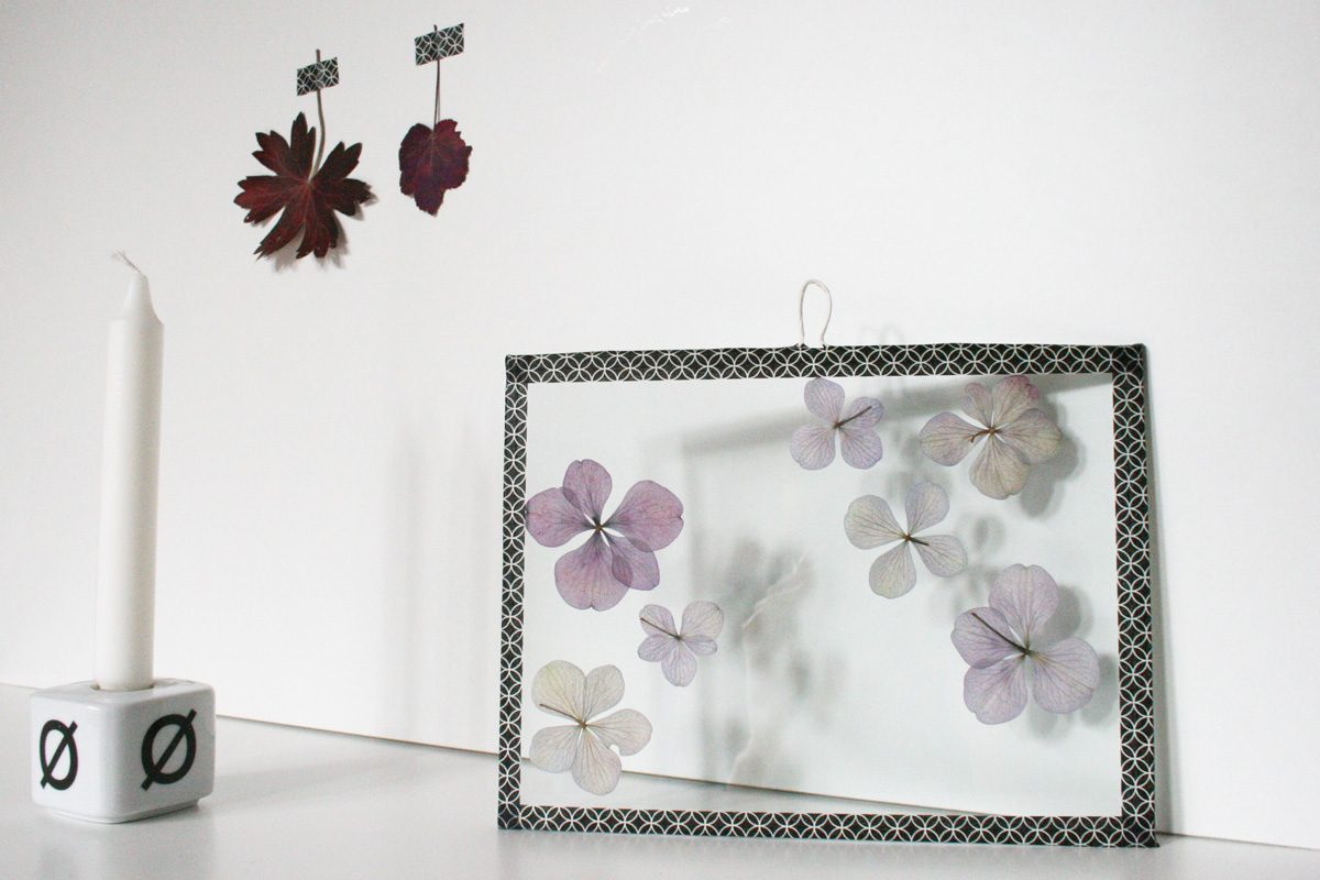bl ten im dekorativen glasrahmen arrangieren ifolor. Black Bedroom Furniture Sets. Home Design Ideas