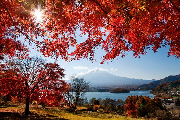 inspire_herbst_footer_2_620px